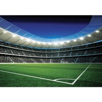 Fototapete Fußball Tapete Fußballstadion Eckpunkt Flutlicht Rasen Tor Tribüne Fans Sterne grün | no. 945