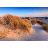 Fototapete Strand Tapete Strand Düne Wasser Beach Ausblick beige | no. 246