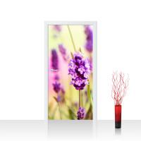 Türtapete - Blumen Blüten Natur Lila Wiese | no. 197
