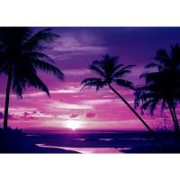 Fototapete Sonnenuntergang Tapete Meer Strand Sonnenuntergang Palme Wolken Romantik lila | no. 1950