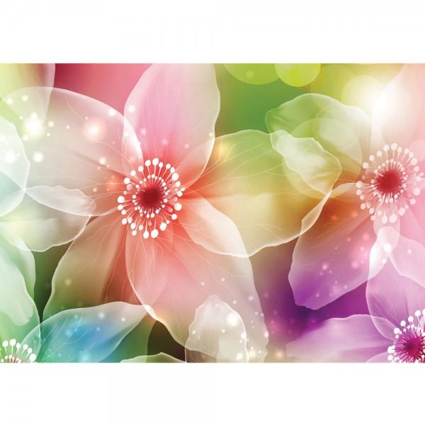 Fototapete Illustrationen Tapete Blumen Seide Malerei Kunst Pflanze Licht Abstrakt lila   no. 1011