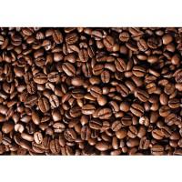 Fototapete Kulinarisches Tapete Kaffee Bohnen braun | no. 521