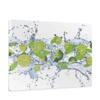 Leinwandbild Limetten Wasser Blätter Tropfen Obst Frucht | no. 864