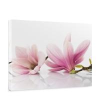 Leinwandbild Orchidee Blumen Blumenranke Rosa Natur Pflanzen Abstrakt | no. 202