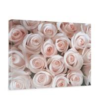 Leinwandbild Blumen Rose Blüten Natur Liebe Love Blüte Rosa | no. 185