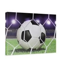 Leinwandbild Fußball Netz Rasen Licht Stadion bunt weiß | no. 431