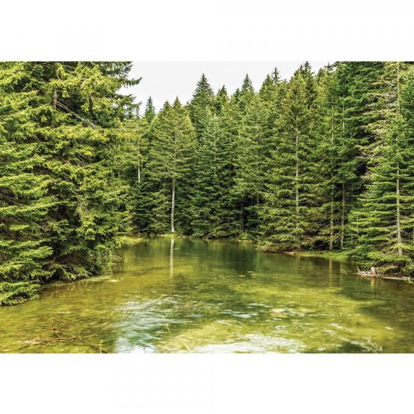 Fototapete Natur Tapete Bäume Wald Fluss Wasser Natur grün   no. 1616