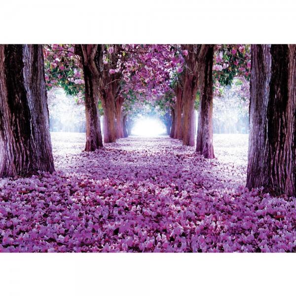 Fototapete Natur Tapete Weg Bäume Blüten Allee Frühling blau   no. 722