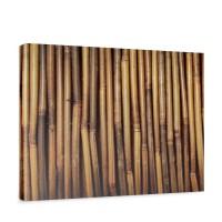 Leinwandbild Bambus gold gelb beige Wald Bambuswald Dschungel Natur | no. 173