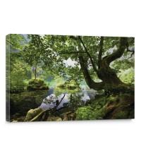 Leinwandbild Wasser Baum Gras Berg Felsen Steine | no. 2421