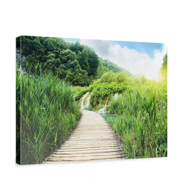 Leinwandbild Wood Way in Deep Forest Holz Weg Grün Feld Natur Landschaft Gras | no. 93