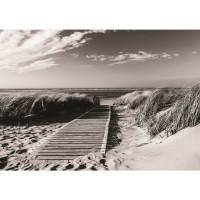 Fototapete Strand Tapete Steg Wasser Meer Sand schwarz - weiß | no. 1720