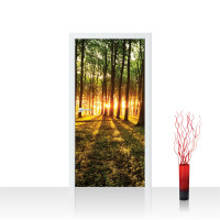 Türtapete - Sonnenuntergang Wald Bäume Wiese | no. 639