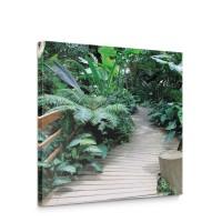Leinwandbild Ausblick Weg Wildnis Bäume Steg Brücke | no. 4487