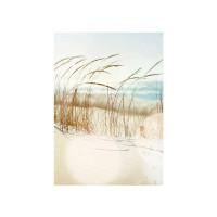 Fototapete Strand Tapete Strand Meer Nordsee Ostsee Beach Wasser Blau Himmel Sonne Sommer beige | no. 148