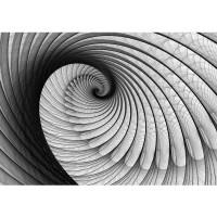 Fototapete 3D Tapete Abstrakt Muschel Geflecht Netz Tunnel Spirale 3D schwarz - weiß | no. 938