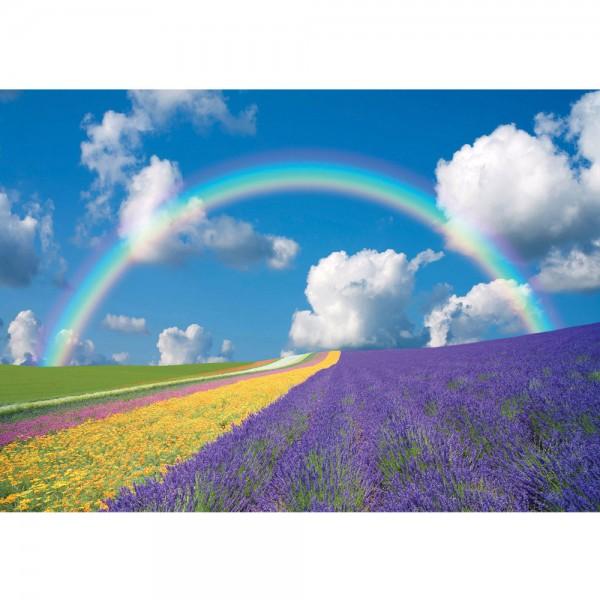Fototapete Himmel Tapete Regenbogen Blumen bunt | no. 273