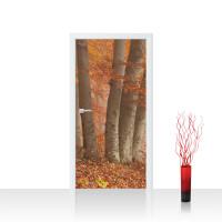 Türtapete - Wald Bäume Natur Baum Herbst Nebel | no. 255