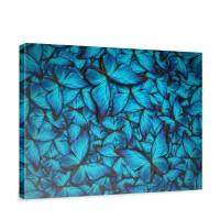 Leinwandbild Schmetterlinge Tiere Natur Blau | no. 192