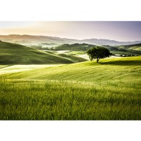Fototapete Landschaft Tapete Feld Natur Ausblick Berge Sonne beige | no. 243