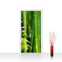 Türtapete - Far Asia Bamboo Bambus Bambuswald Dschungel Asia Asien Bambusweg | no. 18