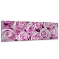 Leinwandbild Blumen Rose Blüten Natur Liebe Love Blüte Pink | no. 186