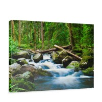 Leinwandbild Waterfall Woods Wald Wasserfall Natur Baum grün | no. 31