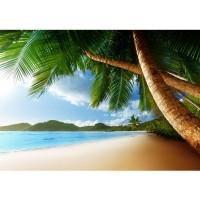 Fototapete Lonely Beach Strand Tapete Strand Meer Palmen Beach 3D Ozean Palme blau | no. 4