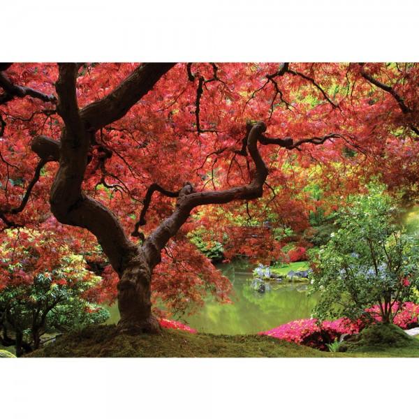 Fototapete Wald Tapete Baum See Wiese Steine Stamm Blätter Blumen Brücke Wald rot   no. 828