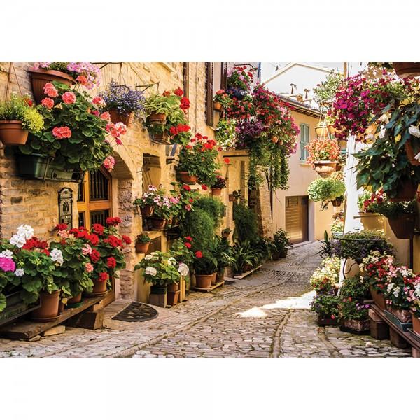 Fototapete Frankreich Tapete Gasse Idylle Blume Blumekasten Schatten Häuser natural | no. 1462