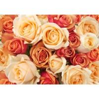 Fototapete Blumen Tapete Blumen Rose Blüten Natur Liebe Love Blüte Gelb blau | no. 191