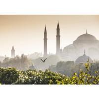 Fototapete Türkei Tapete Istanbul Türkei Moschee Natur Nebel braun | no. 250