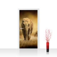 Türtapete - African Savanna Afrika Savanne Elefant Elefanten Gras Landschaft | no. 11