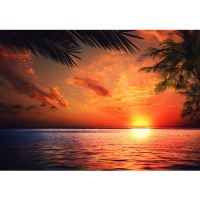 Fototapete Caribbean Sundown Meer Tapete Sonnenaufgang Meer Strand Beach Sonnenuntergang Palmen orange | no. 117