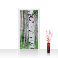 Türtapete - Birch Forest II Birkenwald 3D perspektive Birke Stämme Wald | no. 81