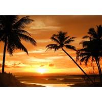 Fototapete Sonnenuntergang Tapete Palmen Strand Meer Horizont orange | no. 2590