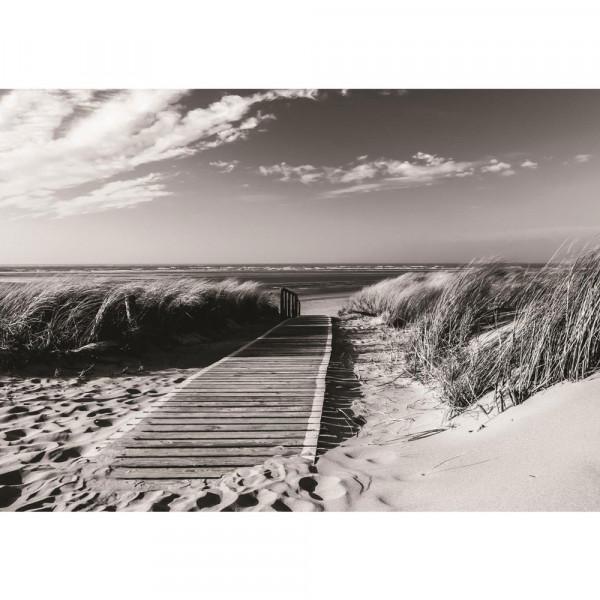 Fototapete Strand Tapete Steg Wasser Meer Sand schwarz - weiß   no. 1720