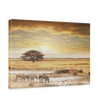 Leinwandbild Wüste Tiere Zebras Sonnenaufgang Natur | no. 236