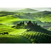 Fototapete Sunrise in Tuscany Landschaft Tapete Sonnenaufgang Italien Toskana Weinberg Weingut grün | no. 68