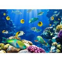 Fototapete Underwater World Tiere Tapete Aquarium Unterwasser Meereswelt Meer Fische Riff Korallenriff blau | no. 33